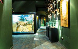 museo de la caza yebenes2
